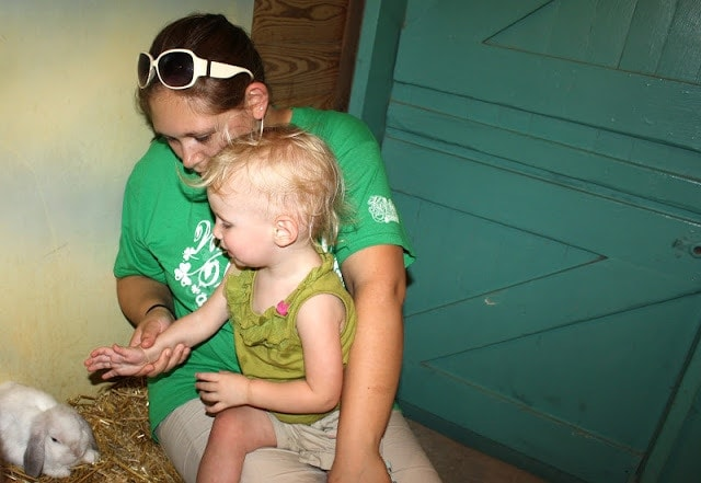 A little girl sitting in a woman\'s lap petting a bunny.