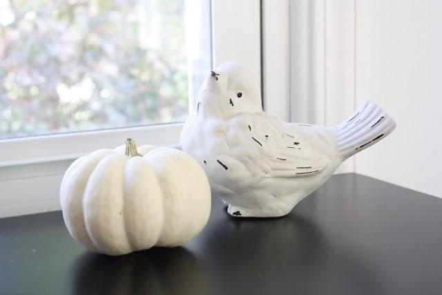A white pumpkin next to a white bird.