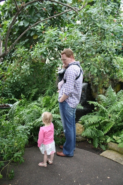 Chris and the two girls looking at butterflies.