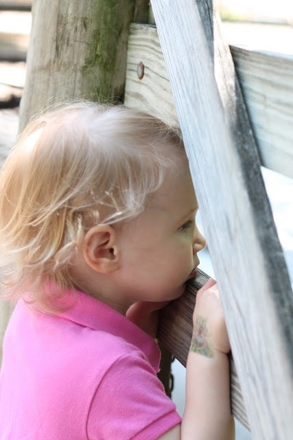 A little girl is standing in front of a fence