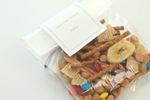 Trail mix with pretzels, M&Ms, various nuts, and Chex cereal in a plastic bag.