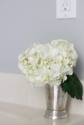 A vase of white flowers