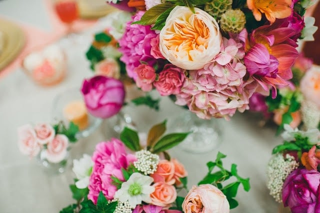 A close up of a pink, orange, green, and purple flowers.