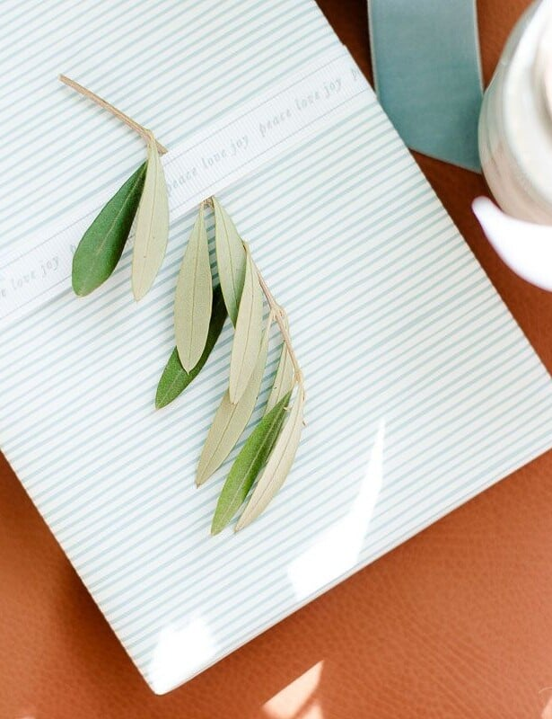 A blue and white striped Christmas gift wrap box with a touch of greenery with the ribbon.