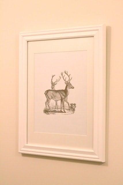 A framed picture of deer