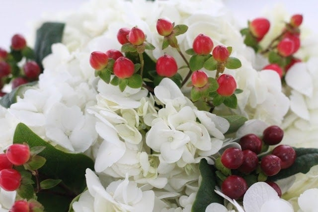 Light and dark red berry accents in white flowers.