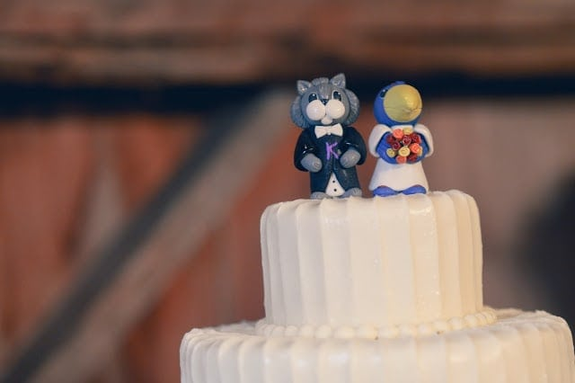 A close up of a wedding cake and its toppers