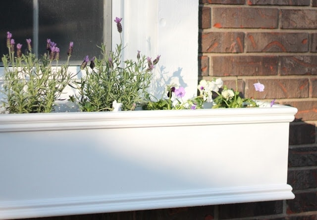 A white wooden DIY window box filled with fresh spring flowers.