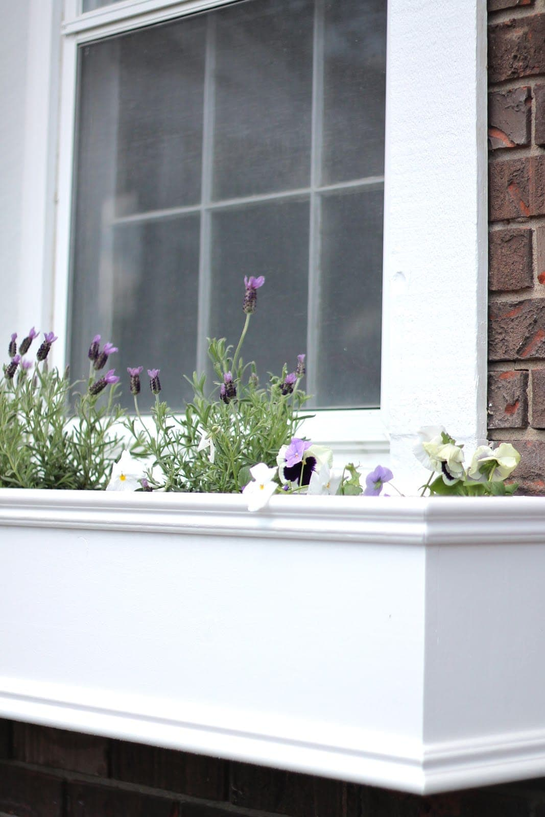 A white diy window box filled with spring flowers.