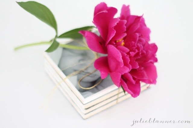 A close up of a flower on top of photo coasters.