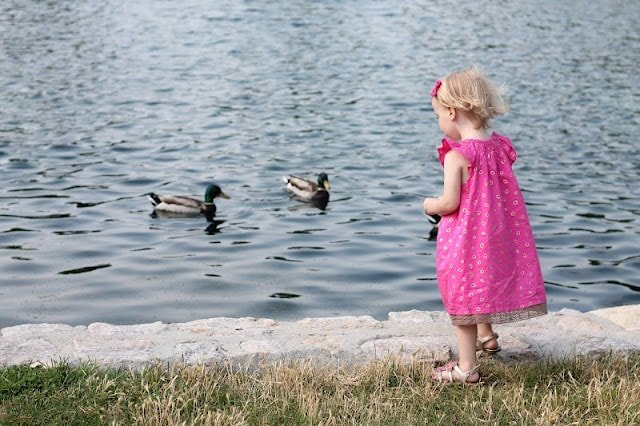A little girl standing next to a body of water feeding the ducks.