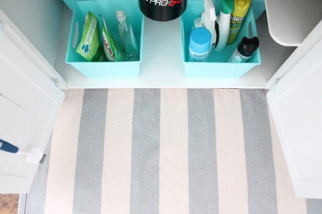 Looking down into an organized under sink kitchen cabinet, striped rug in front.