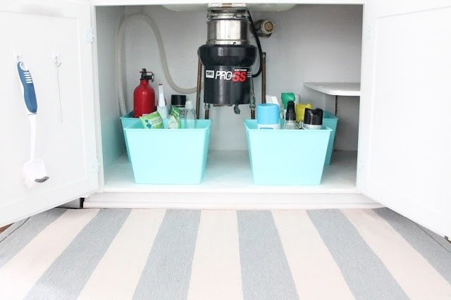 Looking into an organized under sink kitchen cabinet, striped rug in front.