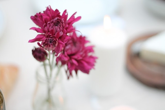 A close up of pink flowers in a mason jar vase.