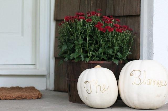 Pumpkins next to flowers
