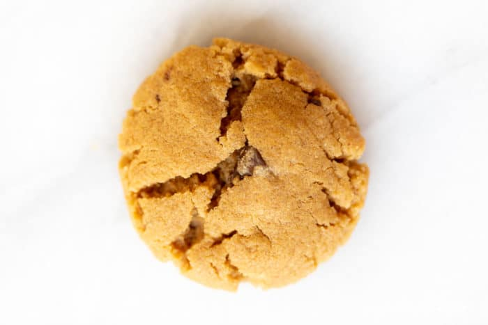 closeup photo of gluten free peanut butter chocolate chip cookie