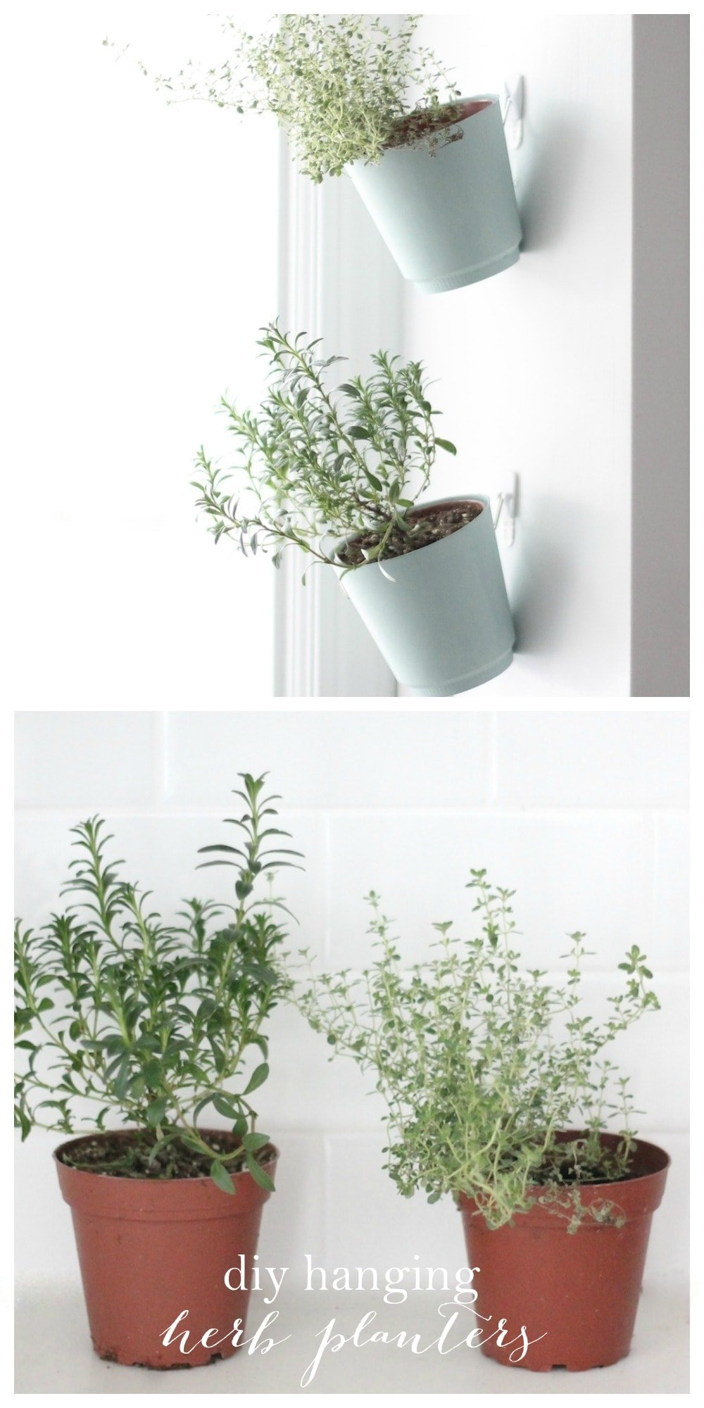 indoor herb garden hanging planter tutorial