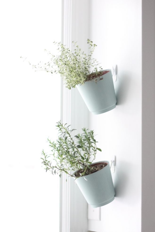 Hanging Wall Garden Diy : Hanging herb planters indoor garden