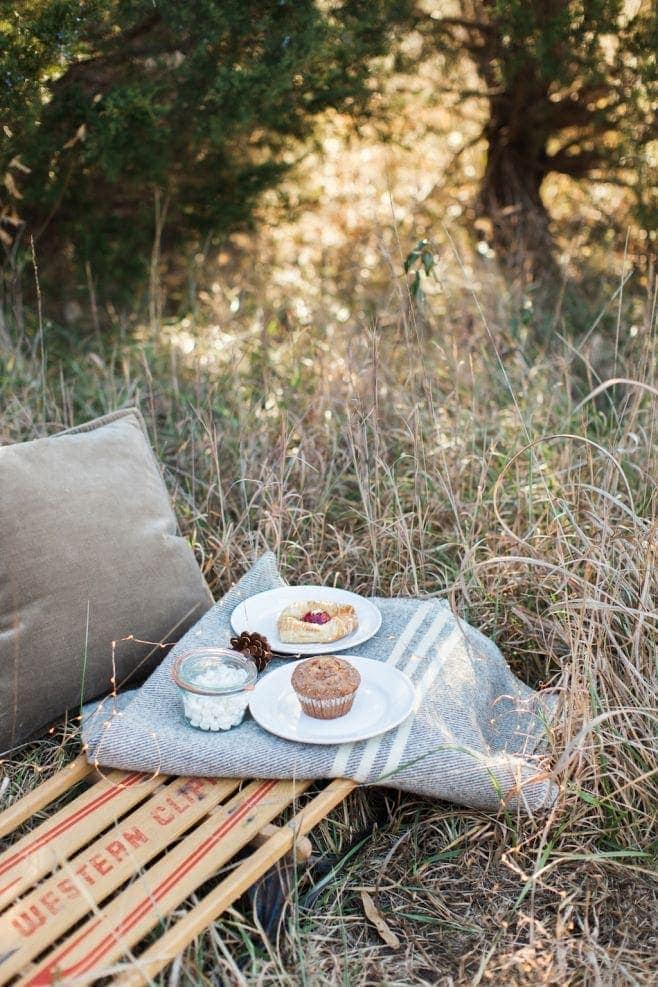cozy Valentine's Day picnic