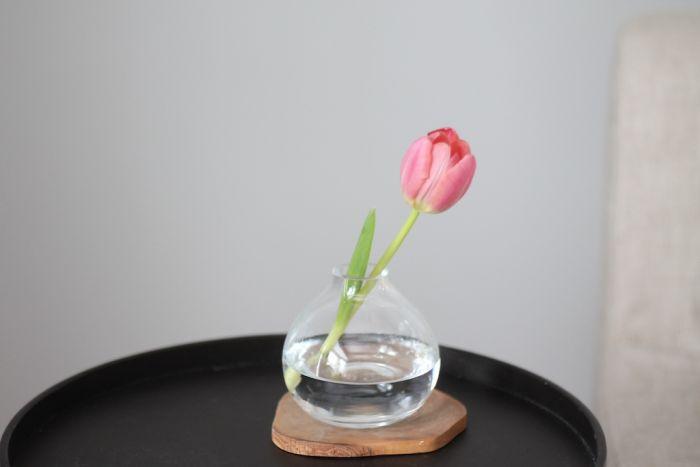 How To Arrange Tulips Julie Blanner
