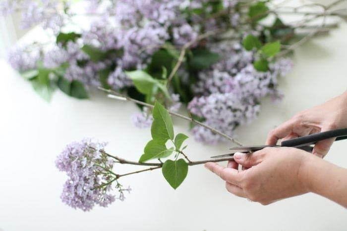 how to create your own beautiful bouquet from your own garden - perfect for gifting