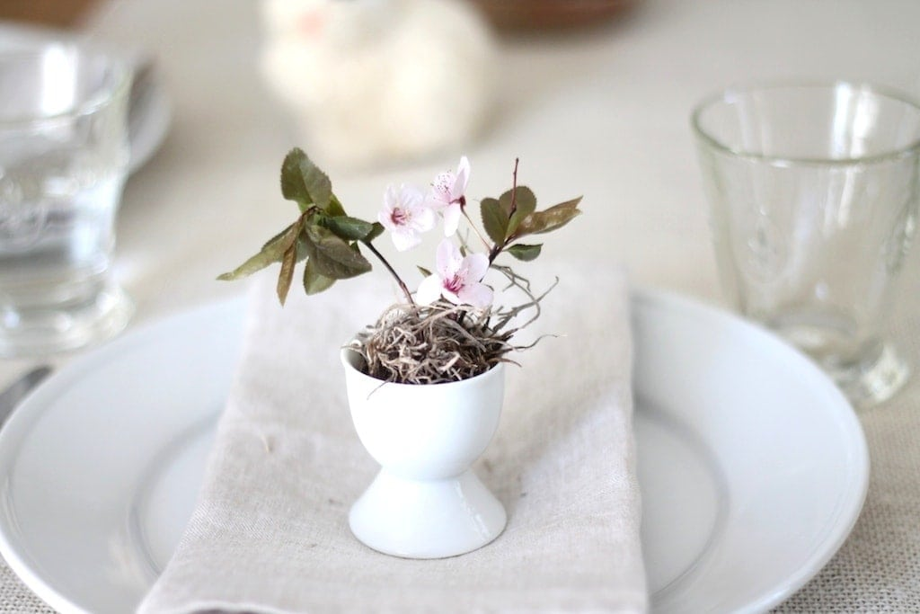 Simple Easter decorating ideas - flowers in an egg cup