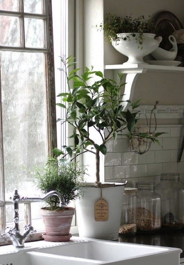 subway tile backsplash, open shelves, bridge faucet & plants by large window