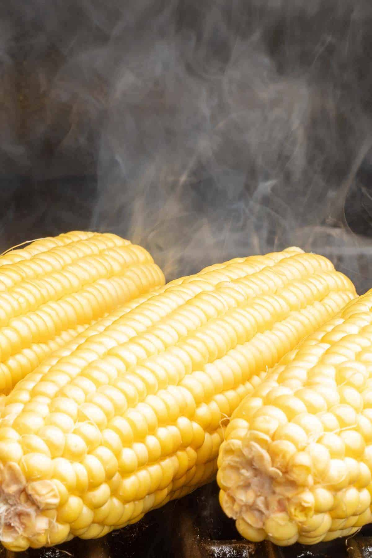 Grilled corn on the cob on a hot grill, smoke rising between the ears.
