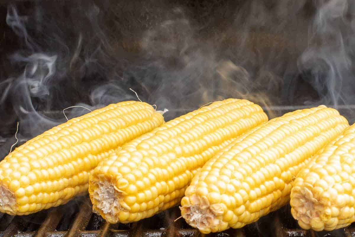 Grilled sweet corn on a hot grill, smoke rising between the ears.