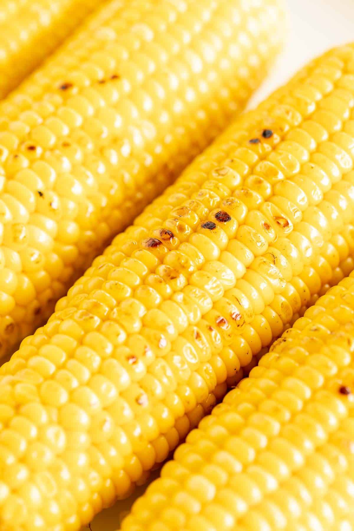 3 ears of grilled sweet corn close-up.