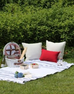 Fourth of July picnic ideas