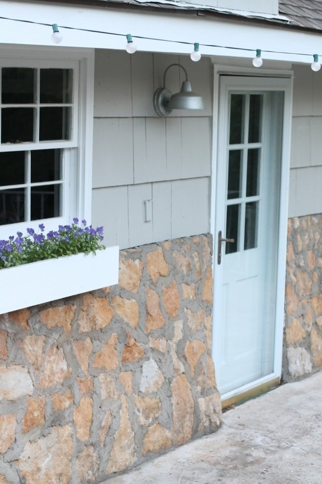 violas - window box ideas for shade