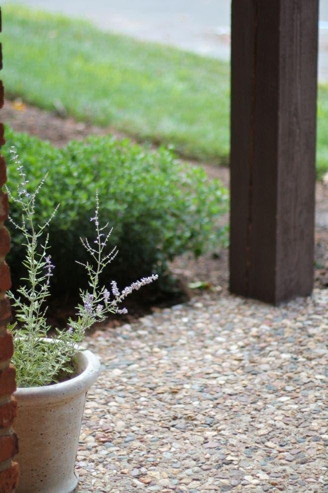 Free Printable Garden Journal Let the Gardening Begin