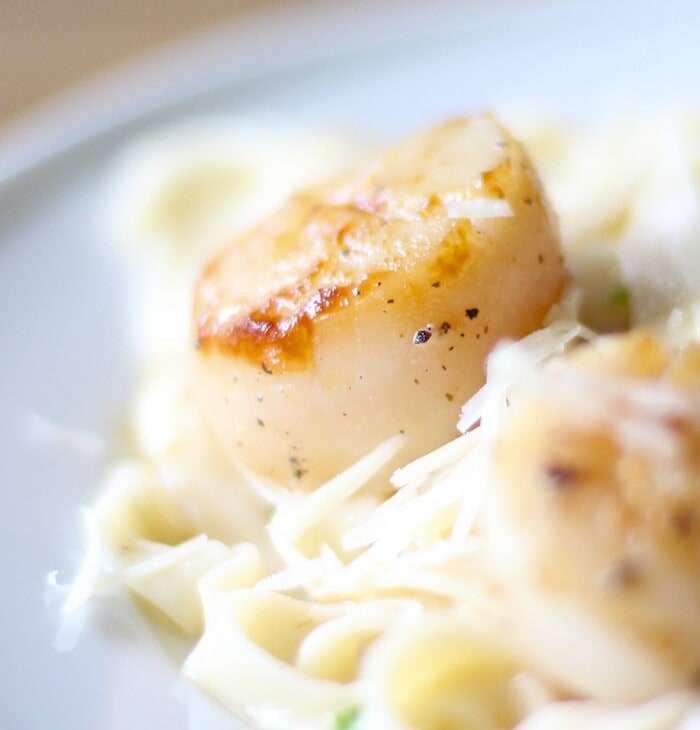 How to cook scallops - incredible seared in flavor in minutes