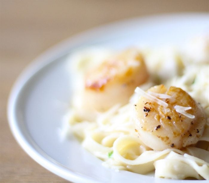 Tips for cooking scallops - learn how to sear scallops like a pro in just 6 minutes
