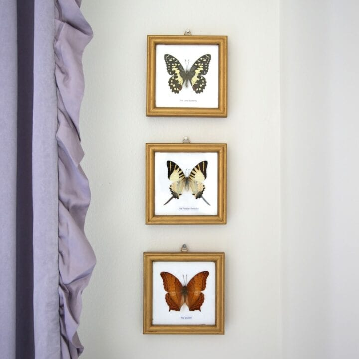 pretty butterfly art for a big girl bedroom