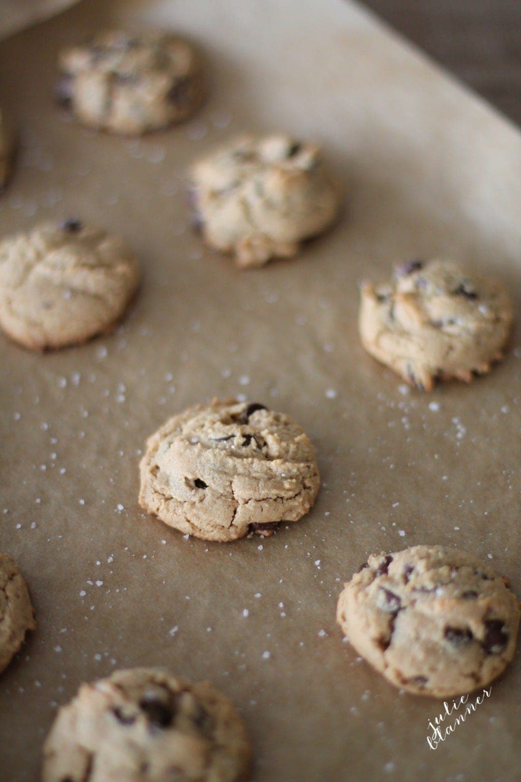 Gluten Free Peanut Butter Chocolate Chip Cookie recipe