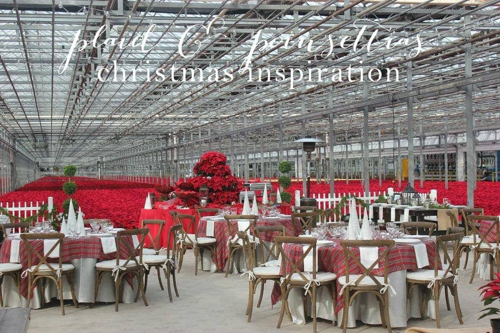 Plaid & Poinsettias Christmas Party - beautiful inspiration!