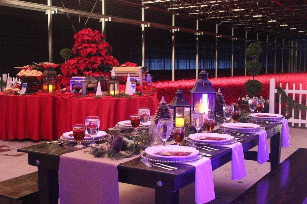 Christmas Table inspiration - lanterns, poinsettias & sandpaper trees