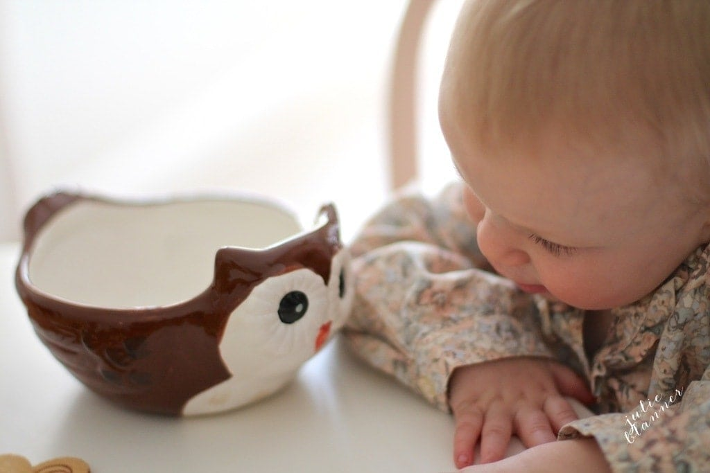 Kids' dinning table with owl bowl