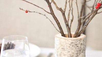 birch vase with red berries