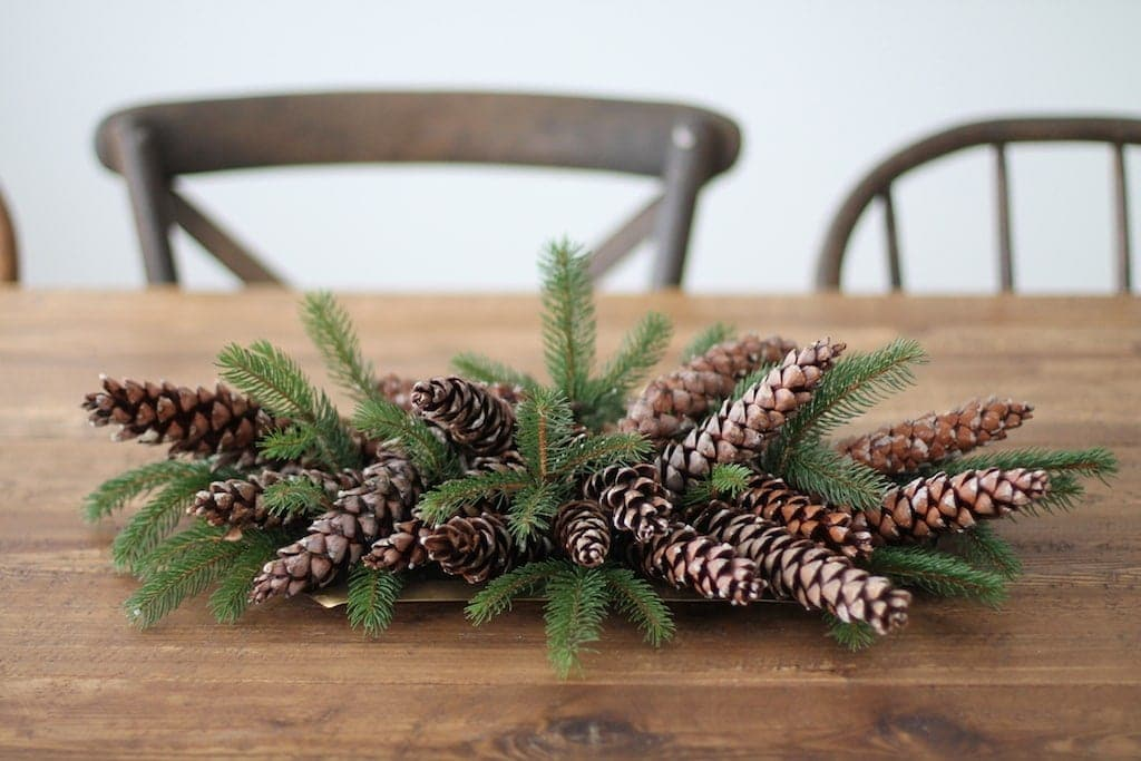 5 minute diy christmas centerpiece with pinecones berries flower recipe a christmas centerpiece for less than 10 solutioingenieria Images