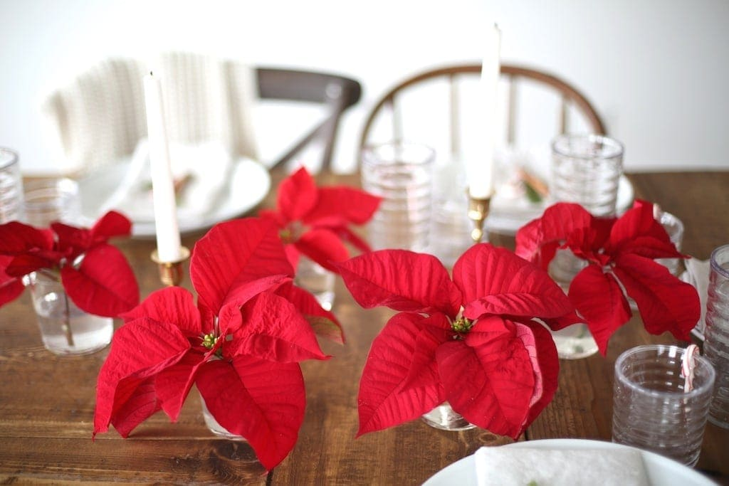 Julie Blanner shares her Christmas entertaining tips with Souther Living magazine, including this 5 minute diy Christmas centerpiece using a poinsettia!