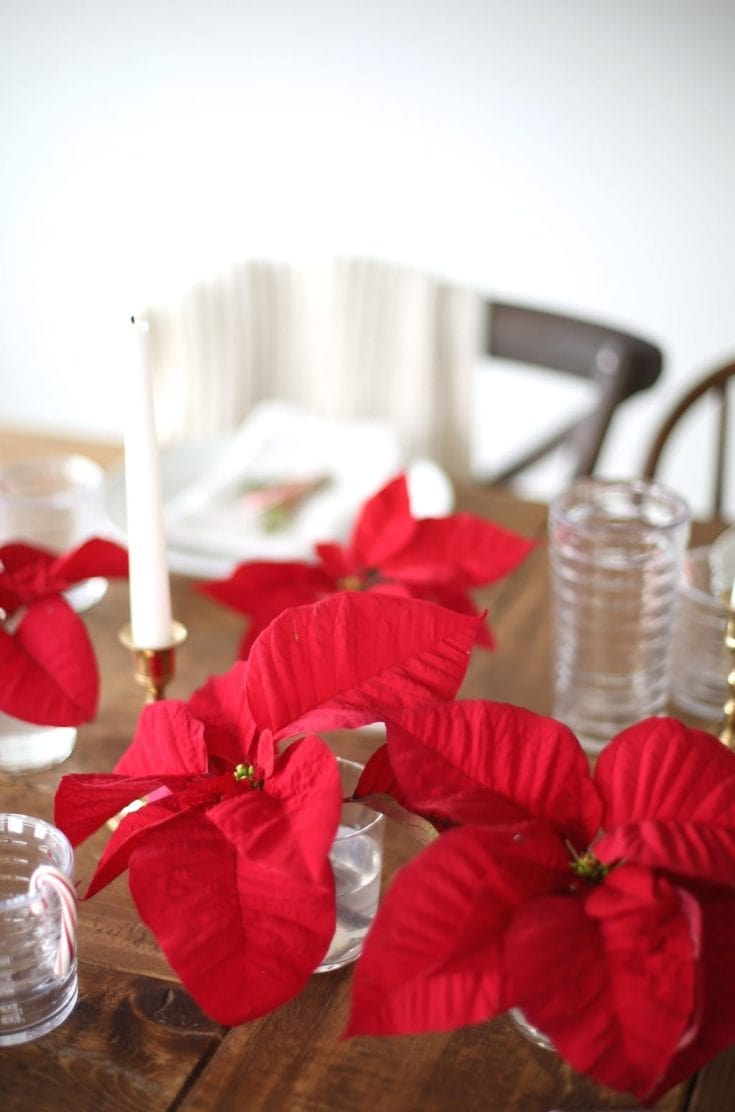 Use a Single Plant to Make a Gorgeous Table Setting