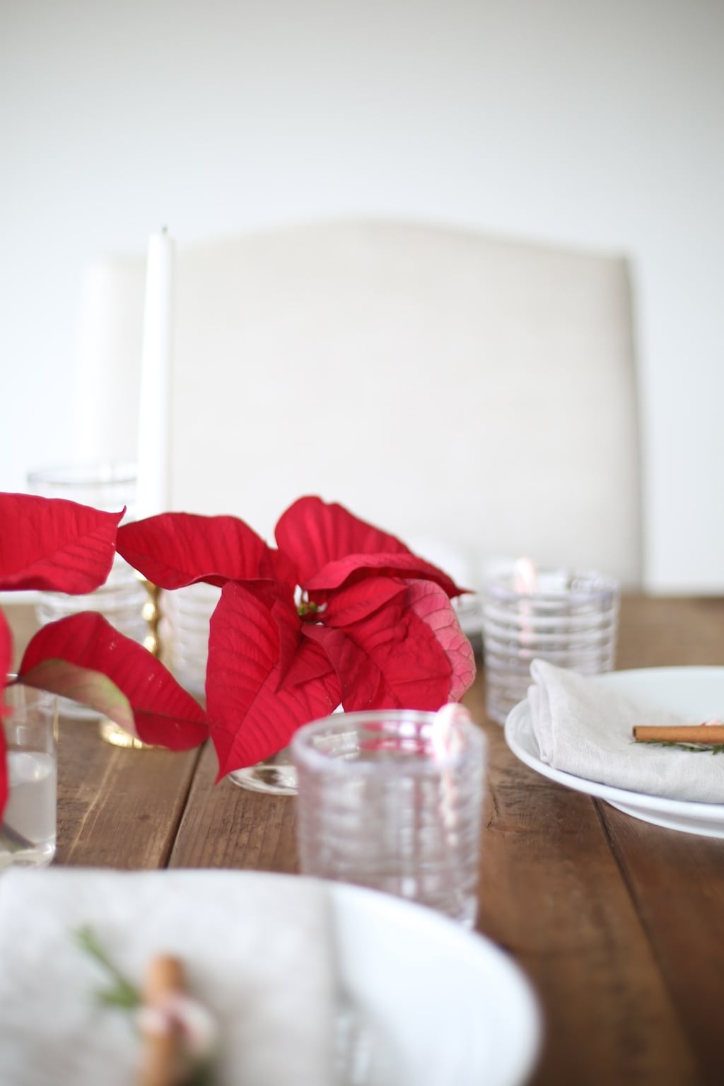 DIY Poinsettia centerpiece & entertaining tips with Southern Living magazine