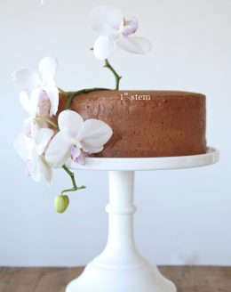 Create your own beautiful birthday cake
