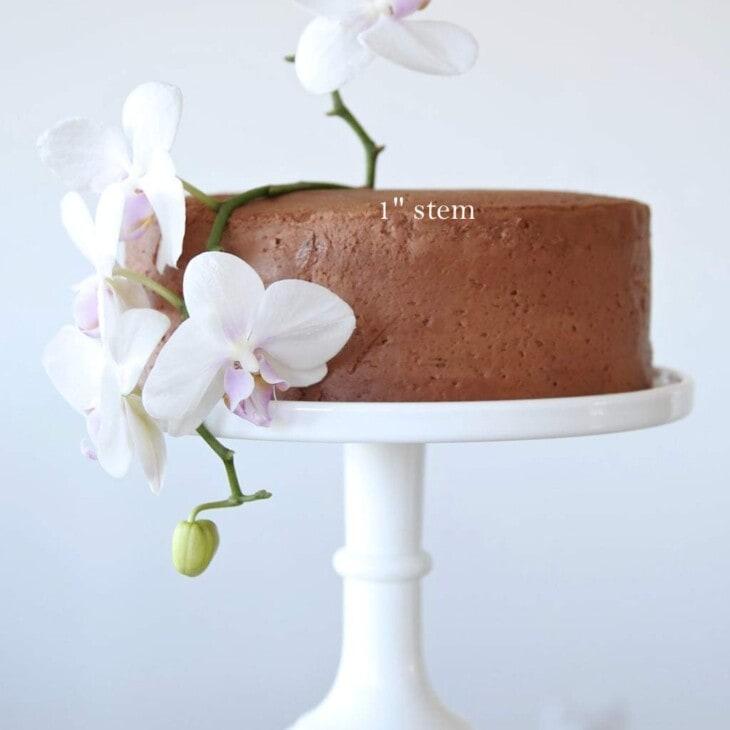 Create your own beautiful birthday cake