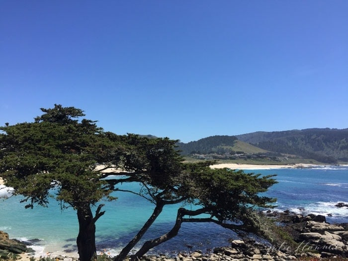 biking the 17 mile drive in California