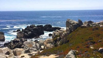 What do do in Carmel California | 17 mile drive map & details