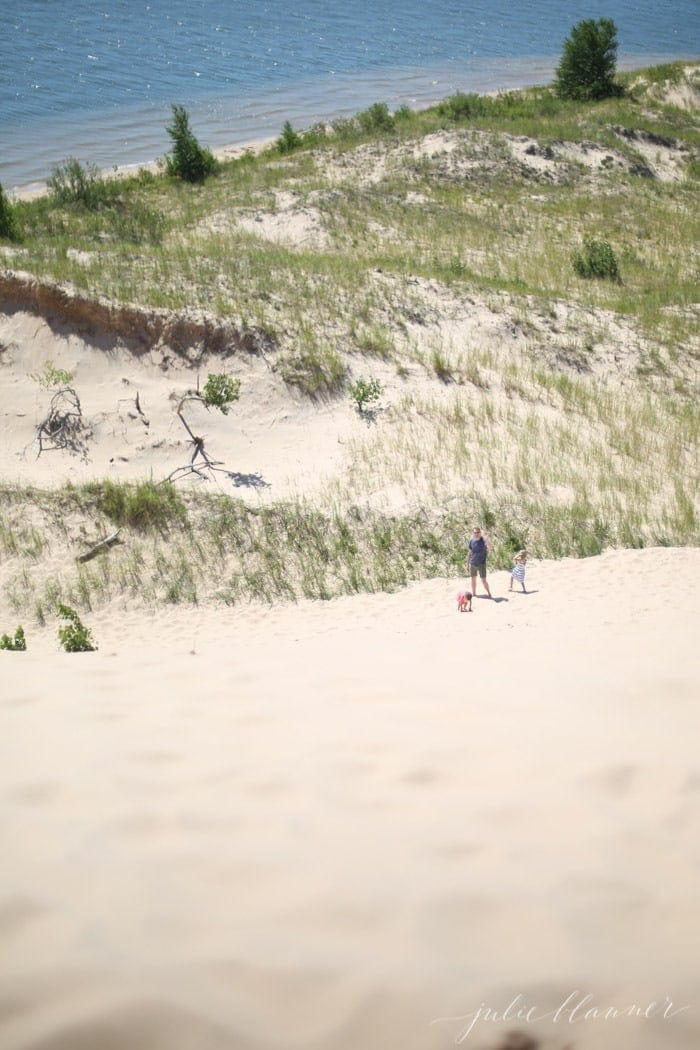 Slide down {then climb} the sand dunes at Silver Lake in West Michigan